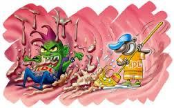 Colesterol bm